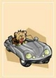 Teddy Bear Driving Gift Card #16